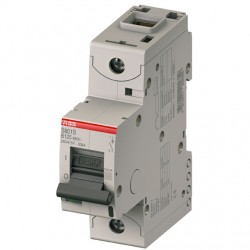Автоматический выключатель S801B-C125